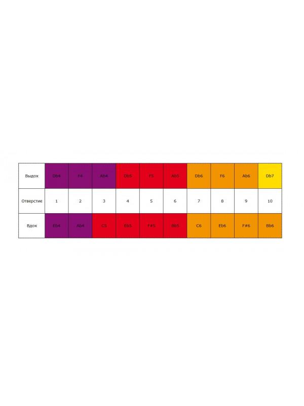 HOHNER Golden Melody 542/20 / Db (Доступ на 30 дней к бесплатным урокам) Губная гармоника диатоническая Хонер