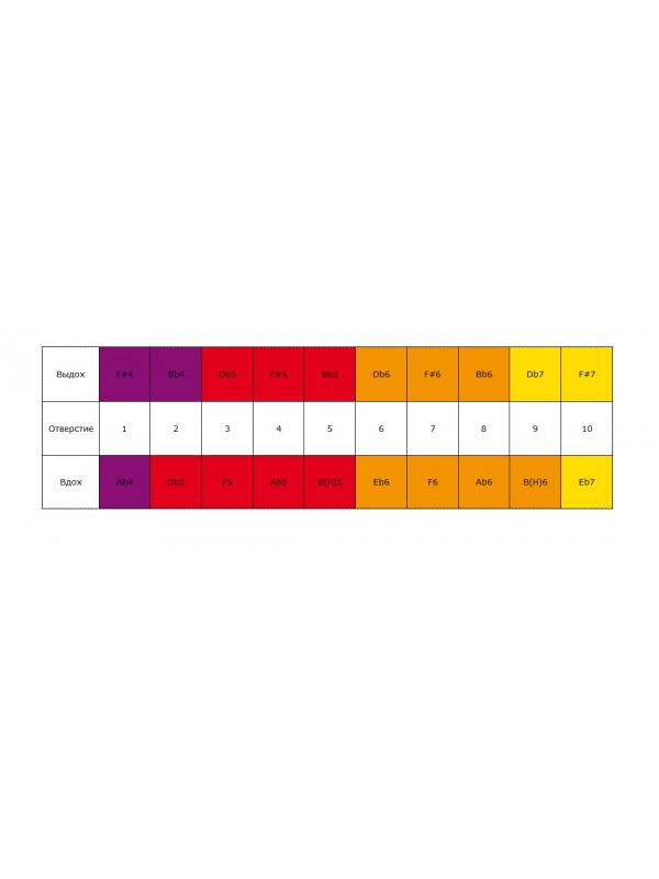 HOHNER Golden Melody 542/20 F# (Доступ на 30 дней к бесплатным урокам) - Губная гармоника диатоническая Хонер