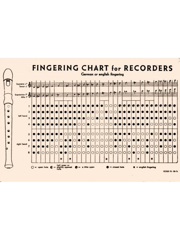 HOHNER B9565 Блокфлейта сопрано немецкая система Хонер