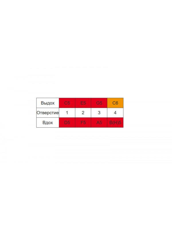 HOHNER K91386 - Губные гармошки (набор) детская Хонер